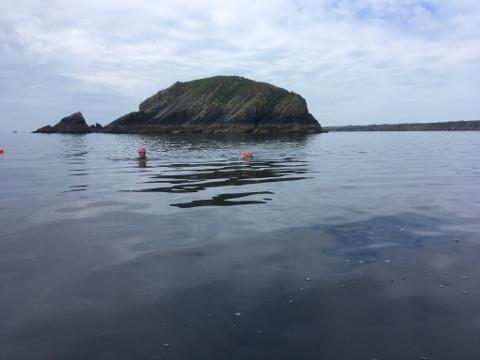 Open water swimming pembrokeshire, wild swimming wales, muuk-adventures wild swimming, sea swimming solva, green monster swim, swim adventures